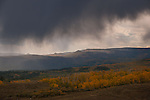 Early Autumn Storm, Boulder Mountain, Utah