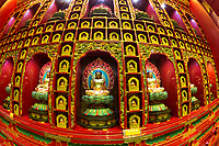 Fisheye of colorful buddhas sitting in meditation, inside the Buddha Tooth Relic Temple, in the Chinatown area of Singapore, Southeast Asia