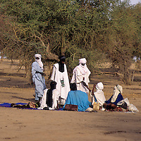 Akadaney, Central Niger, West Africa.  Fulani Nomads Talking.  Annual Gathering, Geerewol.