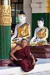 Myanmar, (Burma), Yangon Region, Rangoon: Buddhist monk sitting under Buddha statues in the Shwedagon pagoda | Myanmar (Birma), Yangon-Division, Rangun: Buddhistischer Moench und Buddha-Statuen in der Shwedagon Pagode