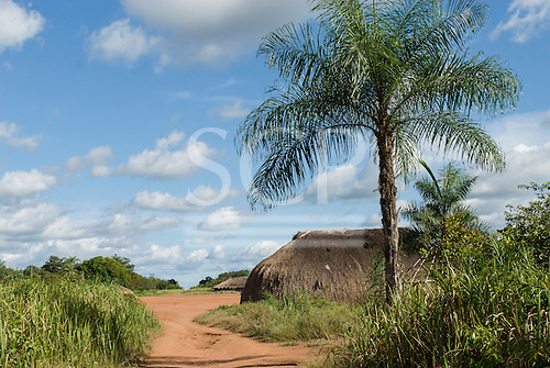 Xingu Indigenous Park, Mato Grosso State, Brazil. Aldeia Matipu.