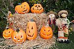 United States of America, California, San Francisco: Halloween Pumpkin display | Vereinigte Staaten von Amerika, Kalifornien, San Francisco: Halloween Dekoration