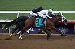 DEL MAR, CA - NOVEMBER 03: Battle of Midway #9, ridden by Flavien Prat, wins the Breeders' Cup Las Vegas Dirt Mile on Day 1 of the 2017 Breeders' Cup World Championships at Del Mar Thoroughbred Club on November 3, 2017 in Del Mar, California. (Photo by Carson Dennis/Eclipse Sportswire/Breeders Cup)