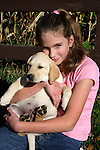 12 year old girl holds a yellow Labrador retriever puppy (AKC) on her lap.  Fall.  Birchwood, WI