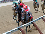 Patternrecognition (no. 1) wins Race 9 Aug. 11, 2018 at the Saratoga Race Course, Saratoga Springs, NY.  Ridden by Luis Saez and trained by Chad Brown,  Patternrecognition finished 3/4 lengths in front of Phi Beta Express (no. 2).  (Bruce Dudek/Eclipse Sportswire)
