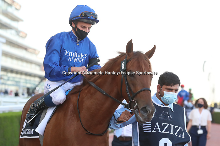 March 27, 2021: SPACE BLUES(IRE) #8 in the post parade for the Al Quoz sprint on Dubai World Cup Day, Meydan Racecourse, Dubai, UAE. Shamela Hanley/Eclipse Sportswire/CSM