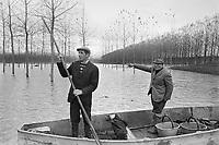 - flood of the Po river, inundated lowlands in province of Mantova (October 1976) ....- piena del fiume Po, terreni golenali allagati in provincia di Mantova  (ottobre 1976)