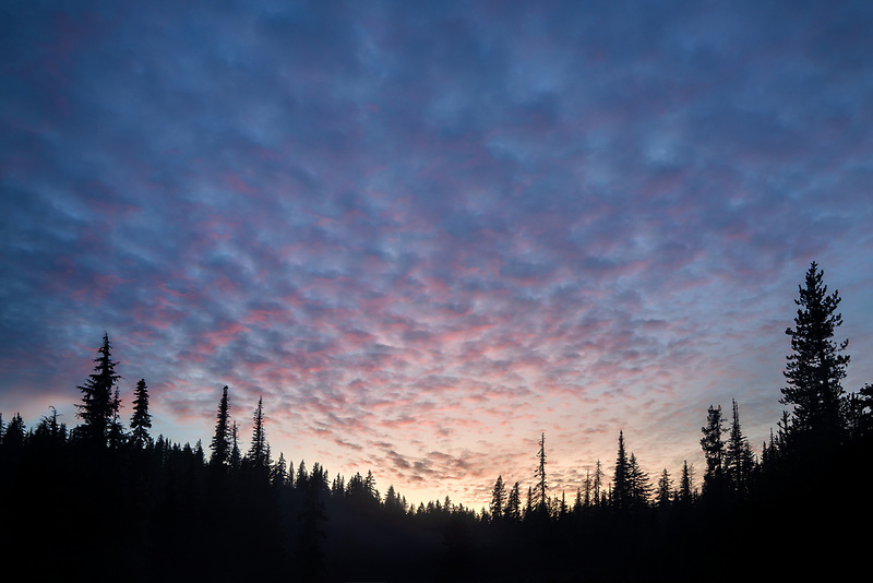 Sunset cloudds and tree line on edge of Scott Lake. Willamette National Forest