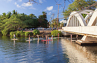 Standup paddleboarders near Anahulu Stream Bridge in Haleiwa, O'ahu.