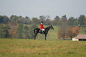 Outrider, Pennsylvania Hunt Cup field, Unionville, Pa.