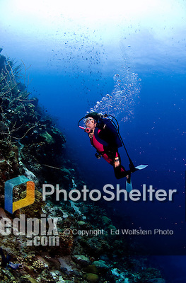 17 August 2005: Scuba diver Sally Herschorn glides up the undersea coral wall in forty feet of water at Small Wall Reef off the coast of Bonaire, in the Netherland Antilles. Housing used was an Aquatica D100 with 8 inch dome port. Lighting with single Ikelite 225s strobe, manual at 1/4 power setting...Mandatory Photo Credit: Ed Wolfstein Photo