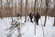 Pemigewasset Wilderness - Group of hikers in forest near the Lincoln Brook Trail in the White Mountains of New Hampshire during the winter months.