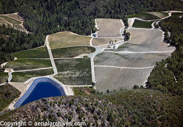 Thorn Hill Vineyar Lake County, California