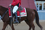 01-22-21 Smart Jones Undercard and Scene Oaklawn
