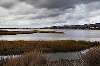 A patch of blue in an otherwise threatening, overcast sky over the Arrowhead Marsh with Oakland and the East Bay hills in the background.