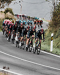 Chris Froome (GBR) and Ineos Grenadiers chase the breakaway during Stage 7 of the Vuelta Espana 2020 running 159.7km from Vitoria-Gasteiz to Villanueva de Valdegovia, Spain. 27th October 2020.  <br /> Picture: Unipublic/BaixauliStudio | Cyclefile<br /> <br /> All photos usage must carry mandatory copyright credit (© Cyclefile | Unipublic/BaixauliStudio)
