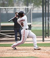 Ricardo Genoves - San Francisco Giants 2019 spring training (Bill Mitchell)
