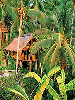 NATIVE HOUSE,HUTS,RESORT