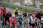The peloton including Yellow Jersey Primoz Rogloc (SLO) and Tony Martin (GER) Team Jumbo-Visma during Stage 5 of Paris-Nice 2021, running 200km from Vienne to Bollene, France. 11th March 2021.<br /> Picture: ASO/Fabien Boukla   Cyclefile<br /> <br /> All photos usage must carry mandatory copyright credit (© Cyclefile   ASO/Fabien Boukla)