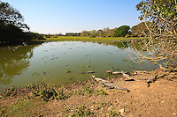 """Pantanal is a tropical wetland and the world's largest wetland of any kind. It lies mostly within the Brazilian state of Mato Grosso do Sul but extends into Mato Grosso as well as into portions of Bolivia and Paraguay, sprawling over an area estimated at between 140,000 square kilometers (54,000 sq mi) and 195,000 square kilometers (75,000 sq mi). Various sub-regional ecosystems exist, each with distinct hydrological, geological and ecological characteristics; <br /> 80% of the Pantanal floodplains are submerged during the rainy seasons, nurturing an astonishing biologically diverse collection of aquatic plants and helping support a dense array of animal species.<br /> The name """"Pantanal"""" comes from the Portuguese word pântano, meaning wetland, bog, swamp or marsh. By comparison, the Brazilian highlands are locally referred to as the planalto, plateau or, literally, high plain. It is the land of caimans, Jacarè in portuguese."""