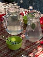 Limonade beim Klosterbauer, Algund bei Meran, Region Südtirol-Bolzano, Italien, Europa<br /> lemonade at the Convent farmer, Lagundo near Merano, Region South Tyrol-Bolzano, Italy, Europe
