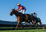 August 22, 2021: #6 GOT STORMY, ridden by TYLER GAFFALIONE, wins the The FourStarDave gr1 at Saratoga Race Course in Saratoga Springs, New York. Rob Simmons/CSM