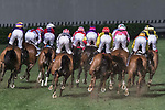 Jockeys steering their horses during the Jardine Handicap on 29 March 2017, at Happy Valley Racecourse in Hong Kong, China. Photo by Chris Wong / Power Sport Images
