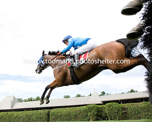 Sermon of Love makes his second win at Saratoga a big one, taking the Grade 1  Turf Writers' Cup.