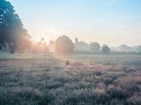 Sunrise over the fields surrounding Sissinghurst Castle in Kent