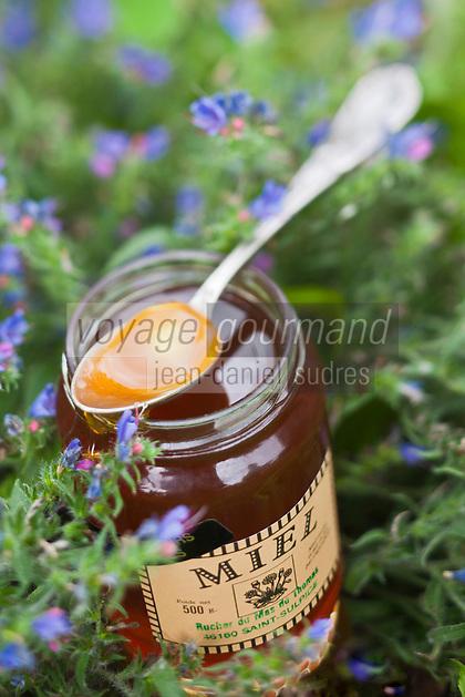 Europe/Europe/France/Midi-Pyrénées/46/Lot/Saint-Sulpice: Miel de fleurs des Causses de la Ferme du Mas de Thomas