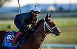 November 2, 2020: Abarta, trained by trainer Brad Cox, exercises in preparation for the Breeders' Cup Juvenile Turf at  at Keeneland Racetrack in Lexington, Kentucky on November 2, 2020. Alex Evers/Eclipse Sportswire/Breeders Cup