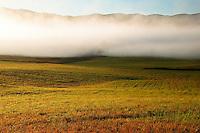 Autumn meadow and receding fog, Cades Cove