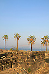 Tel Beth Yerah by the Sea of Galilee