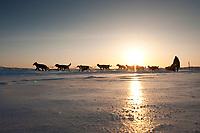 Dan Kaduce runs on the Unalakleet slough ice after leaving Unalakleet in Arctic Alaska during the 2010 Iditarod