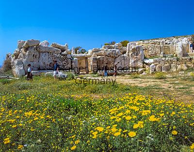 Malta, Qrendi: Mnajdra Tempel   Malta, Qrendi: Mnajdra Temple