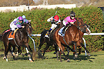 07 11 2009:Expansion with Channing Hill up is a longshot winner in the Grade II Red Smith Handicap at 1 3/8 mile on the turf at Aqueduct Racetrack, Jamaica, NY.  Trained by C.C. Brown.  Owned by Gary & Mary West