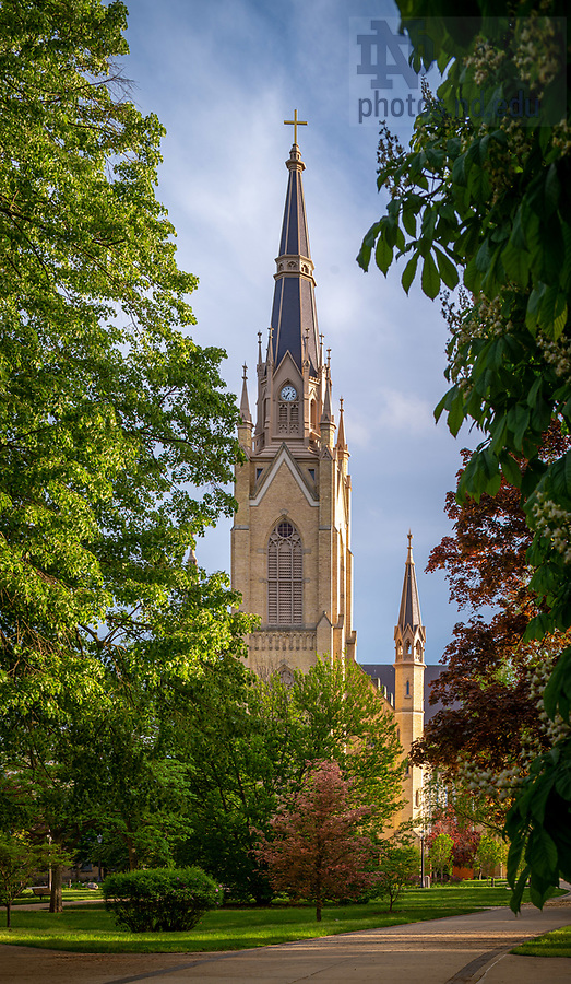 May 20, 2020; Basilica of the Sacred Heart (Photo by Matt Cashore/University of Notre Dame)