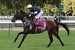 October 02, 2016, Chantilly, FRANCE - Order of St. George with Lanfranco Dettori up at the Qatar Prix de'l Arc de Triomphe (Gr. I) at  Chantilly Race Course  [Copyright (c) Sandra Scherning/Eclipse Sportswire)