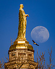 April 5, 2020; A hawk flies past the Mary statue on the Golden Dome as the moon rises in the background. (Photo by Matt Cashore/University of Notre Dame)