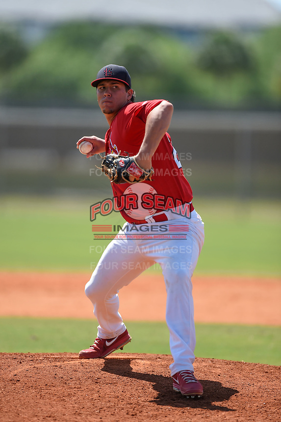 St. Louis Cardinals pitcher Jhonny Polanco (28) during a minor league spring training game against the New York Mets on April 1, 2015 at the Roger Dean Complex in Jupiter, Florida.  (Mike Janes/Four Seam Images)