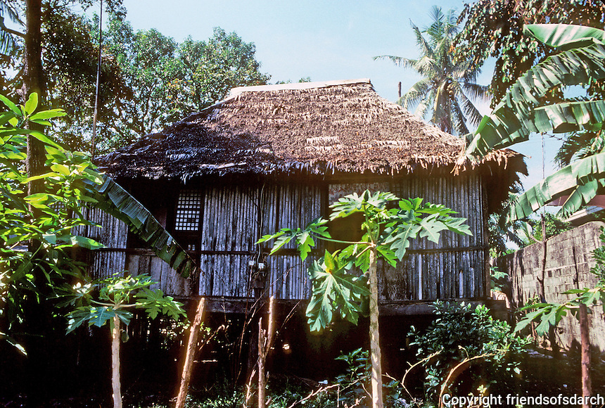 Philippines: Agoo--Thatched roof traditional house on stilts. Photo '82.