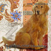 Isabella, REALISTIC ANIMALS, REALISTISCHE TIERE, ANIMALES REALISTICOS, paintings+++++,ITKE066162S-L,#a#, EVERYDAY ,dogs ,collage