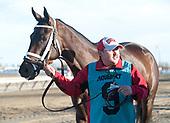 11th Gazelle Stakes - Miss Sky Warrior
