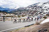 peloton led by Team DSM up the Passo San Bernardino (2065m/SUI)<br /> <br /> 104th Giro d'Italia 2021 (2.UWT)<br /> Stage 20 (through Switzerland) from Verbania to Valle Spluga-Alpe Motta (164km)<br /> <br /> ©kramon