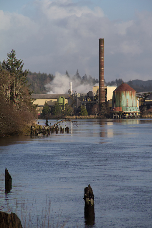 Weyerhaeuser lumber mill, Raymond, Washington State, Willapa River, Pacific County, Pacific Northwest, forest products,