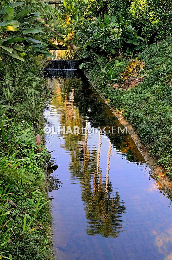 Alameda e córrego, Jardim Botânico, São Paulo. 2021. Foto Juca Martins