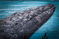 """Detail of the whale mural on a municipal water district building along San Francisco Bay.  The mural is signed """"Greenwood 2008"""""""