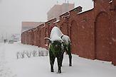 Minsk, Belarus. Diese Skulptur steht an der Metro-Station Perwomajskaja. Wisente sind das Wahrzeichen von Belaurs; im belarussischen Nationalpark an der Grenze zu Polen gibt es sehr viele.