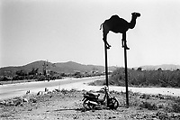 Spain. Balearic Islands.Ibiza. Camel, moped and windmills..Concrete road. Ibiza is an island in the Mediterranean Sea It is the third largest of the Balearic Islands, an autonomous community of Spain. 13.07.99 © 1999 Didier Ruef