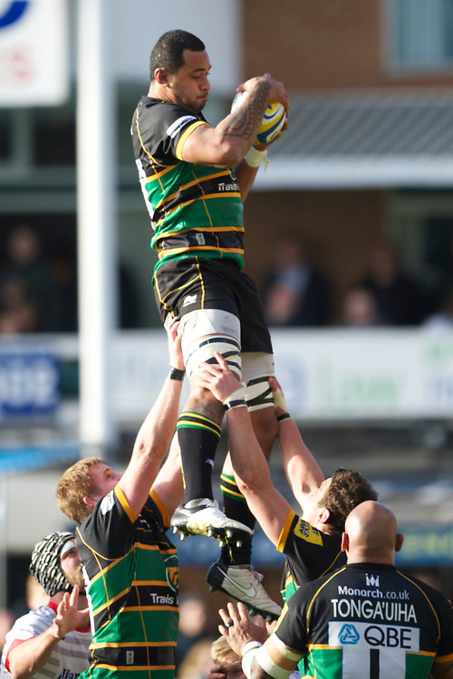 20121027 Copyright onEdition 2012©.Free for editorial use image, please credit: onEdition..Samu Manoa of Northampton Saints wins the lineout during the Aviva Premiership match between Northampton Saints and Saracens at Franklin's Gardens on Saturday 27th October 2012 (Photo by Rob Munro)..For press contacts contact: Sam Feasey at brandRapport on M: +44 (0)7717 757114 E: SFeasey@brand-rapport.com..If you require a higher resolution image or you have any other onEdition photographic enquiries, please contact onEdition on 0845 900 2 900 or email info@onEdition.com.This image is copyright the onEdition 2012©..This image has been supplied by onEdition and must be credited onEdition. The author is asserting his full Moral rights in relation to the publication of this image. Rights for onward transmission of any image or file is not granted or implied. Changing or deleting Copyright information is illegal as specified in the Copyright, Design and Patents Act 1988. If you are in any way unsure of your right to publish this image please contact onEdition on 0845 900 2 900 or email info@onEdition.com